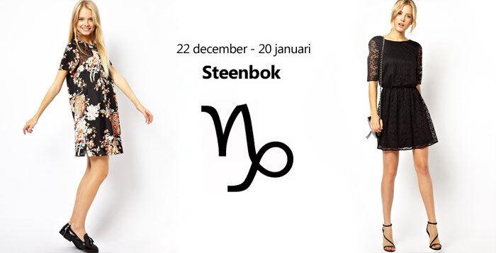 Steenbok stijl