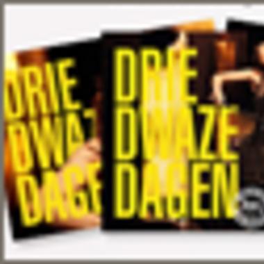 Boekjes van Drie Dwaze Dagen 2013 staan online!