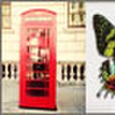 Editor's tips: Londen, vlinders & Tinder